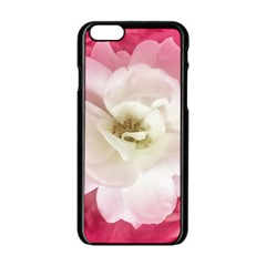 White Rose with Pink Leaves Around  Apple iPhone 6 Black Enamel Case