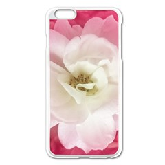 White Rose with Pink Leaves Around  Apple iPhone 6 Plus Enamel White Case
