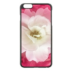 White Rose with Pink Leaves Around  Apple iPhone 6 Plus Black Enamel Case