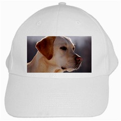 3 Labrador Retriever White Baseball Cap