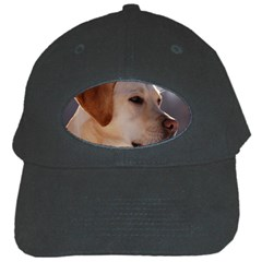 3 Labrador Retriever Black Baseball Cap