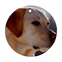 3 Labrador Retriever Round Ornament