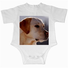 3 Labrador Retriever Infant Bodysuit