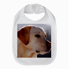 3 Labrador Retriever Bib