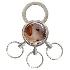3 Labrador Retriever 3-Ring Key Chain
