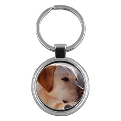 3 Labrador Retriever Key Chain (Round)