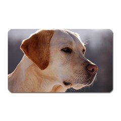 3 Labrador Retriever Magnet (Rectangular)