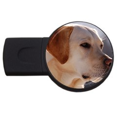 3 Labrador Retriever 2GB USB Flash Drive (Round)