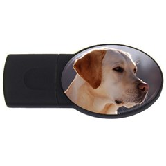 3 Labrador Retriever 2GB USB Flash Drive (Oval)