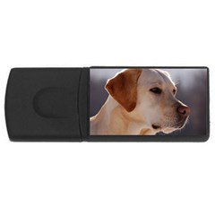 3 Labrador Retriever 2GB USB Flash Drive (Rectangle)