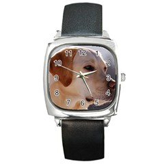 3 Labrador Retriever Square Leather Watch