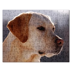 3 Labrador Retriever Jigsaw Puzzle (Rectangle)