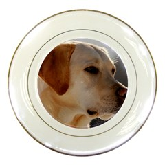 3 Labrador Retriever Porcelain Display Plate
