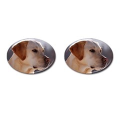 3 Labrador Retriever Cufflinks (Oval)