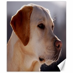3 Labrador Retriever Canvas 8  x 10  (Unframed)
