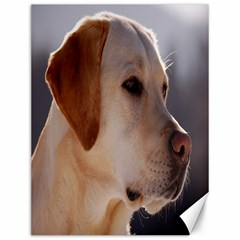 3 Labrador Retriever Canvas 12  x 16  (Unframed)