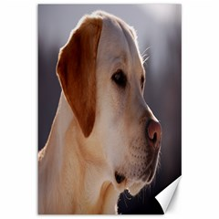 3 Labrador Retriever Canvas 12  x 18  (Unframed)