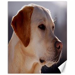 3 Labrador Retriever Canvas 16  x 20  (Unframed)