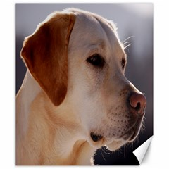 3 Labrador Retriever Canvas 20  x 24  (Unframed)