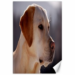 3 Labrador Retriever Canvas 20  x 30  (Unframed)
