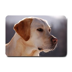 3 Labrador Retriever Small Door Mat