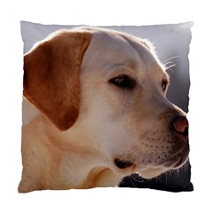 3 Labrador Retriever Cushion Case (Two Sided)