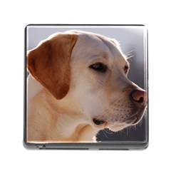 3 Labrador Retriever Memory Card Reader with Storage (Square)