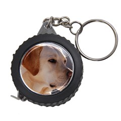 3 Labrador Retriever Measuring Tape