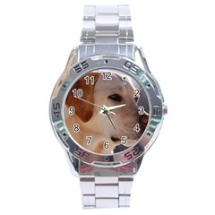 3 Labrador Retriever Stainless Steel Watch
