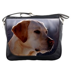 3 Labrador Retriever Messenger Bag