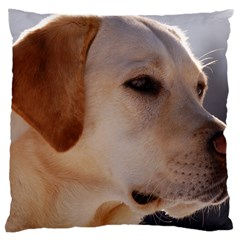 3 Labrador Retriever Large Cushion Case (Single Sided)
