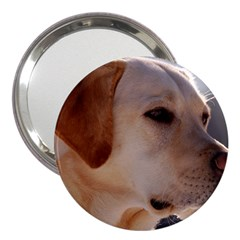 3 Labrador Retriever 3  Handbag Mirror