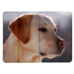 3 Labrador Retriever Kindle Fire (1st Gen) Flip Case
