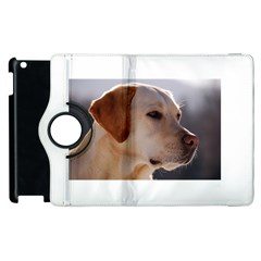 3 Labrador Retriever Apple iPad 2 Flip 360 Case
