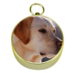 3 Labrador Retriever Gold Compass