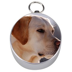 3 Labrador Retriever Silver Compass