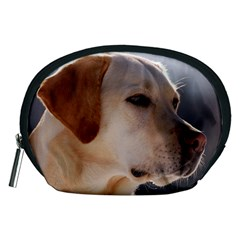 3 Labrador Retriever Accessory Pouch (Medium)