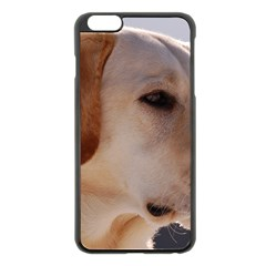3 Labrador Retriever Apple iPhone 6 Plus Black Enamel Case