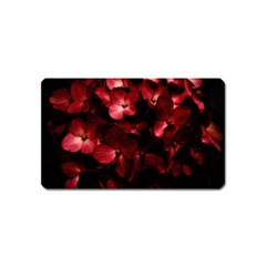 Red Flowers Bouquet In Black Background Photography Magnet (name Card)