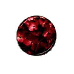 Red Flowers Bouquet In Black Background Photography Golf Ball Marker 10 Pack (for Hat Clip)