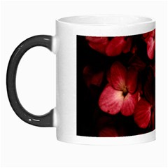 Red Flowers Bouquet in Black Background Photography Morph Mug