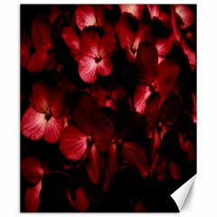 Red Flowers Bouquet In Black Background Photography Canvas 20  X 24  (unframed)