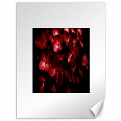 Red Flowers Bouquet in Black Background Photography Canvas 36  x 48  (Unframed)