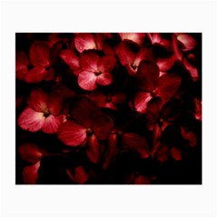 Red Flowers Bouquet In Black Background Photography Glasses Cloth (small, Two Sided)
