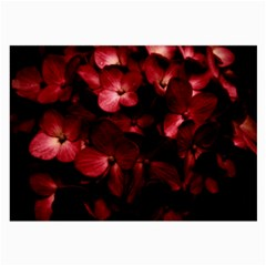 Red Flowers Bouquet In Black Background Photography Glasses Cloth (large, Two Sided)