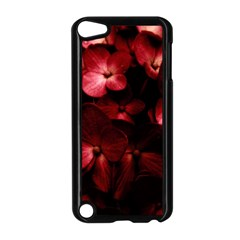 Red Flowers Bouquet In Black Background Photography Apple Ipod Touch 5 Case (black)
