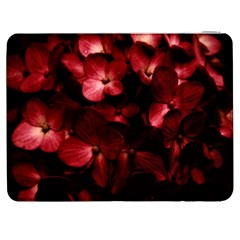 Red Flowers Bouquet in Black Background Photography Samsung Galaxy Tab 7  P1000 Flip Case