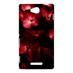 Red Flowers Bouquet in Black Background Photography Sony Xperia C (S39H) Hardshell Case