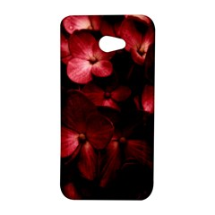Red Flowers Bouquet in Black Background Photography HTC Butterfly S Hardshell Case