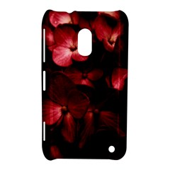 Red Flowers Bouquet in Black Background Photography Nokia Lumia 620 Hardshell Case